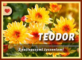 Dla Teodora