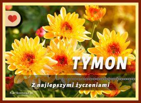 eKartki Imieniny Dla Tymona,