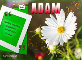 Dzień Imienin Adama