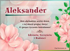 Dzień Imienin Aleksandra