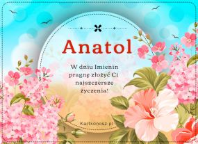 Dzień Imienin Anatola