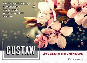 Gustaw - Kartka Imieninowa