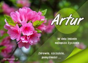 Imieninowy kwiat dla Artura