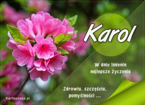 Imieninowy kwiat dla Karola
