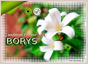 Imieniny Borysa