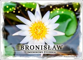 eKartki Imieniny Imieniny Bronisława,