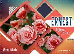 Imieniny Ernesta
