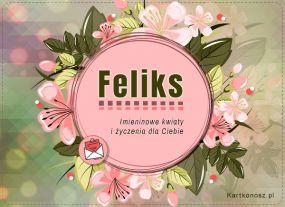 Imieniny Feliksa