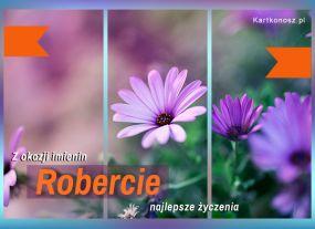 Imieniny Roberta
