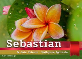 Imieniny Sebastiana