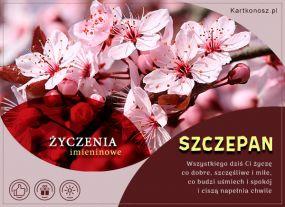e Kartki  z tagiem: e-Kartka Imieniny Szczepana,