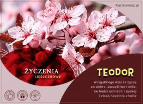 Imieniny Teodora