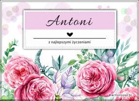 Kartka dla Antoniego
