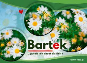 Kartka dla Bartka