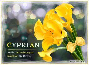Kartka dla Cypriana