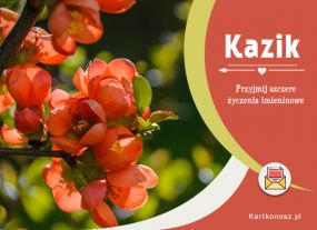 eKartki Imieniny Kartka dla Kazika,