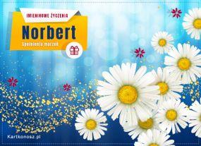 Kartka dla Norberta