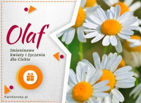 Kartka dla Olafa