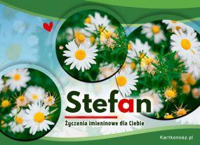 Kartka dla Stefana