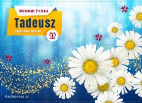 Kartka dla Tadeusza