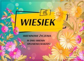 eKartki Imieniny Kartka dla Wieśka,