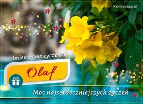 Kartka imieninowa dla Olafa