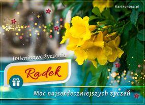 eKartki Imieniny Kartka imieninowa dla Radka,