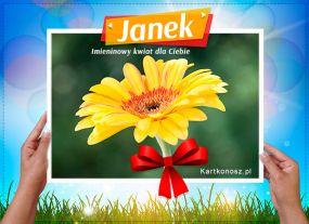 eKartki Imieniny Kwiat dla Janka,