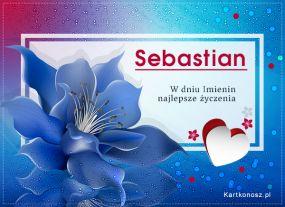 eKartki Imieniny Kwiat dla Sebastiana,