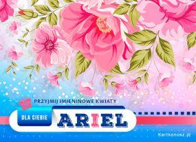 e Kartki  z tagiem: e-Kartki na imieniny Kwiaty dla Ariela,