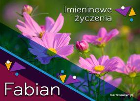 Kwiaty dla Fabiana