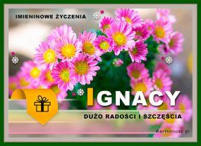 eKartki Imieniny Kwiaty dla Ignacego,