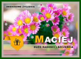 e Kartki Imieniny -> Imienne Męskie Kwiaty dla Macieja,