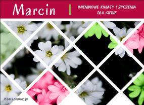 Kwiaty dla Marcina