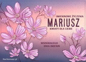 eKartki Imieniny Kwiaty dla Mariusza,
