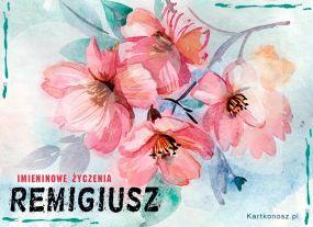 Kwiaty dla Remigiusza