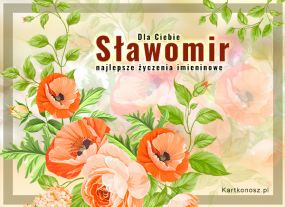eKartki Imieniny Kwiaty dla Sławomira,