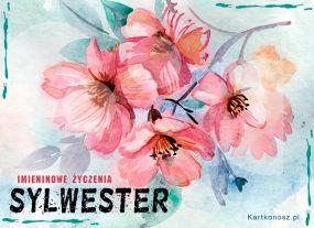 Kwiaty dla Sylwestra