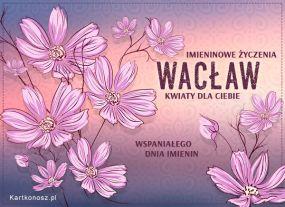 Kwiaty dla Wacława