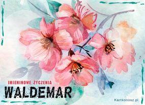 eKartki Imieniny Kwiaty dla Waldemara,