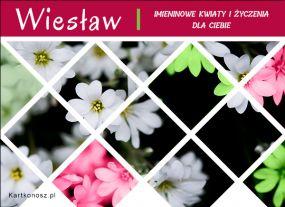 Kwiaty dla Wiesława