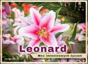 e Kartki  z tagiem: e-Kartka Lilia dla Leonarda,