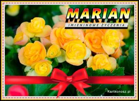 Marian - Kartka Imieninowa