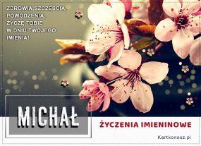 Michał - Kartka Imieninowa