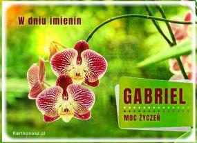 e Kartki Imieniny -> Imienne Męskie Moc życzeń dla Gabriela,