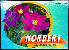 Norbert - Kartka Imieninowa