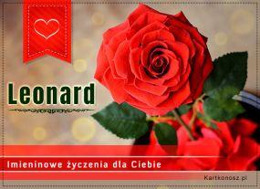 e Kartki  z tagiem: e-Kartka Róża dla Leonarda,