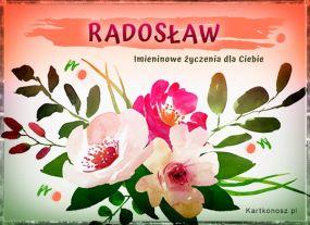eKartki Imieniny Radosław - Kartka Imieninowa,