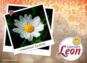 Solenizant Leon