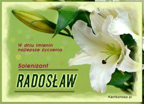 e Kartki  Solenizant Radosław,